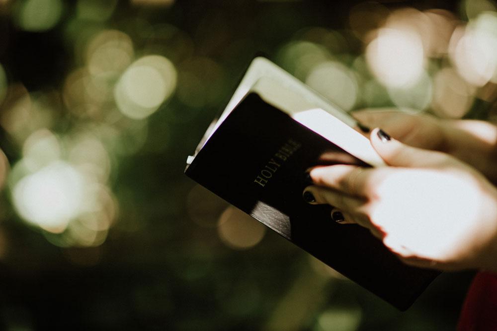 New Pilgrim Publications